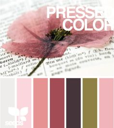Palette:   Pressed Color  (Design Seeds)