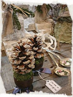 Pine Cones place settings