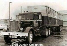 Big Rig Trucks, Semi Trucks, Old Trucks, Antique Trucks, Vintage Trucks, Vintage Auto, Cattle Trailers, Large Truck, Peterbilt