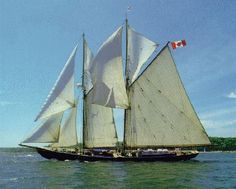 Bluenose II Under Full Sail