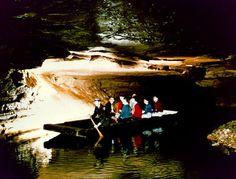 EEUU 08 Parque Nacional de Mammoth Cave Situado en el Estado de Kentucky, el Parque Nacional de Mammoth Cave posee la mayor red del mundo de cavernas y galerías naturales subterráneas, ejemplos característicos de de formaciones geológicas calcáreas. El parque y su red subterránea de más de 560 km albergan una fauna y flora de especies variadas, algunas de las cuales se hallan en peligro de extinción.