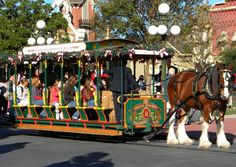 Main Street Trolley at Christmas at the Magic Kingdom, Walt Disney World, Florida