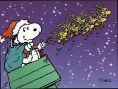 Santa Snoopy and Woodstock and Friends as Reindeer Merry Christmas Photos, Peanuts Christmas, Hallmark Christmas, Christmas Themes, Vintage Christmas, Christmas Countdown, Christmas Stuff, Christmas Humor, Christmas Eve