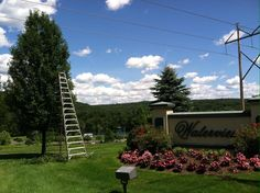 Cristian Tree Services & Lawn LLC is the premium tree cutting service in Danbury,CT.Contact us at (203) 648-8241!