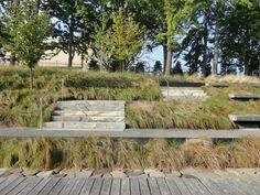 Prospect park  Brooklyn Botanic