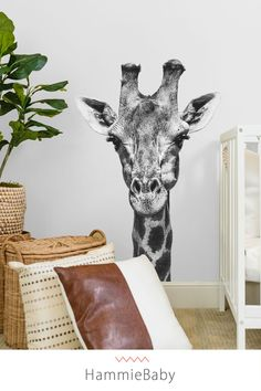 Our aesthetic wallpaper and peel and stick wall decals are perfect for adding an accent wall to your baby room, nursery, kids room or playroom. We have wallpapers of all styles and nursery themes. Safari Nursery, Boho Nursery, Animal Nursery, Nursery Neutral, Nursery Decor, Nursery Rugs, Nursery Themes, Nursery Ideas, Boho Bedroom Decor
