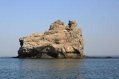 #cat #island #oman #sea #rock Sea, Island, Rock, Cats, Instagram Posts, Gatos, Skirt, The Ocean, Islands