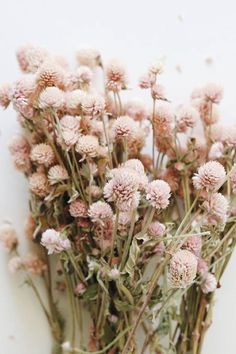 Get the look for your wedding with affordable dried flowers from Afloral.com. Image by @pinkandonyx #driedflorals #driedflowers #pinkflowers Wildflower Bridal Bouquets, Dried Flower Bouquet, Dried Flowers, Light Pink Flowers, Fall Flowers, Wedding Flowers, Simple Flowers, Light Pink Color, Amaranth Flower