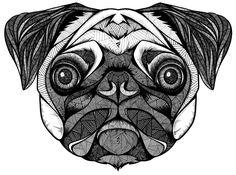 Pin by Karenina on Zentangles & Funky Doodles | Pinterest