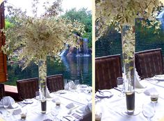 tall centerpieces for weddings - Yahoo! Search Results