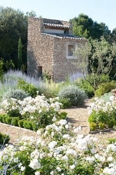 Lay of the Landscape: 12 Elements of Provence Garden Style - Mediterranean Landscape by Thomas Gentilini (drying herbs lavender) Provence Garden, Provence France, Minimalist Garden, Lavender Garden, Lavender Fields, Garden Cottage, Garden Trees, Herbs Garden, Terrace Garden