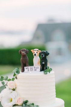 (20) fianceebodas (@FianceeBodas) / Twitter Gatsby Wedding, Wedding Bells, Fall Wedding, Dream Wedding, Dogs At Wedding, Wedding Styles, Wedding Cakes, Dog Wedding Cake Toppers, New England
