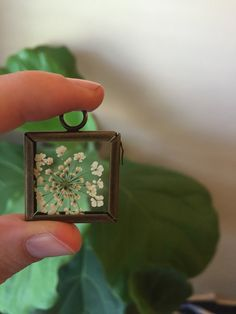 Queen Anne Lace Botanical Necklace Pressed by GlassHouseCollection