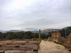 Thimble and Twig: Italia Part 2, Rome