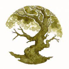 Ink Tree Test: Diamine 150th Anniversary ~ Safari