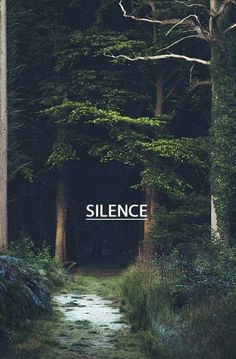 #nature There is no silence quite like that of nature...