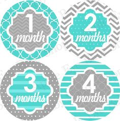 Baby+Monthly+Stickers+PLUS+Just+Born+1st+year+by+appleeyebabyshop,+$9.99