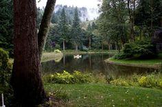 Real Weddings: Elisabeth & Jeshua's $5,000 Oregon Lake Wedding -really beautiful setting and story