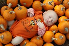 """2 - October """"Halloween"""" theme // At a pumpkin patch? Fall Newborn Pictures, Halloween Baby Pictures, Babys 1st Halloween, Fall Family Pictures, Baby Photos, Family Photos, Pumkin Patch Pictures, Pumpkin Photos, Baby Pumpkin Pictures"""