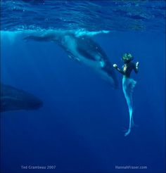 Hannah Fraser mermaid...2 pages of beautiful pictures.  Also, her water depth accomplishments at http://abcnews.go.com/2020/real-life-mermaids-superhumans/story?id=10771939    and other amazing pictures.