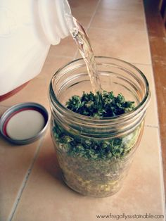 Cannabis Herbal Liniment for the treatment of pain, sore muscles, and inflammation #cannabiscures