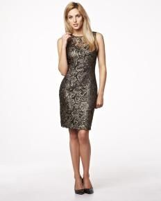 Brocade lace dress | Shop Online at RW & Co.