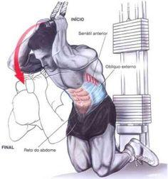 imagens exercícios musculação