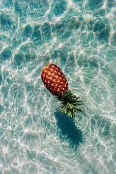 a dose of sea | LOVE LIFE