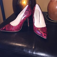 NWOT black and red snake skin heals! Brand new never worn black and red heels! Size 8.5 Wild Diva Shoes Heels