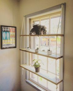 Custom Window Pine/Rope/Hardware Hanging Shelving Unit