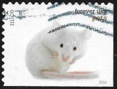 Stamp: Mice (Mus musculus f. domestica) (United States of America) (Pets 2016) Mi:US 5311,Sn:US 5117,Yt:US 4943