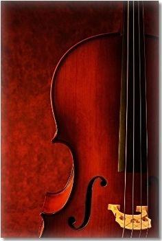 cello,cello,cello...