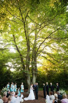Beech Grove (on Woodland Park Zoo's grounds).