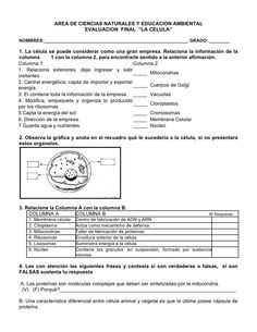 Evaluacion # 1   La Celula by Carlos Aguiar via slideshare