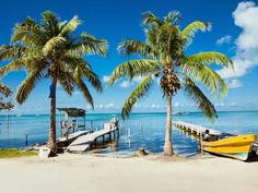 Cruise deals for Alaska, Hawaii, Bahamas, Europe, or Caribbean Cruises. Weekend getaways and great cruise specials. Enjoy Freestyle cruising with Norwegian Cruise Line. Belize Barrier Reef, Great Barrier Reef, Adventure Holiday, Family Adventure, Crooked Tree Wildlife Sanctuary, Cruise Specials, Belize City, Local Tour, Western Caribbean