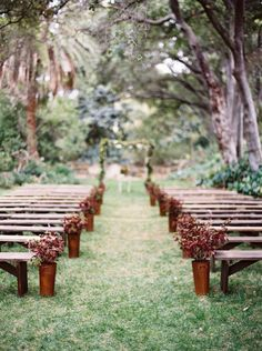 wedding ceremony with benches and potted maroon plants. I don't like the potted plants, but an outdoor ceremony with benches could be so pretty.