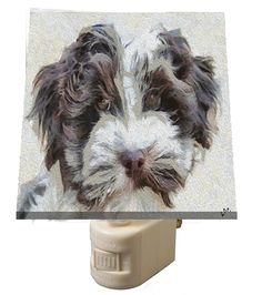 Havanese 'Fideo' - - Night Light From Doggylips by DoggyLips on Etsy