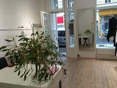 Vienna, Plants, Shopping, Plant, Planets