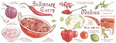 Indian Curry by Suzanne De Nies - They Draw & Cook
