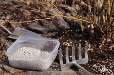 Pesto, Flora, Container, Tableware, Gardening, Dinnerware, Tablewares, Lawn And Garden, Plants