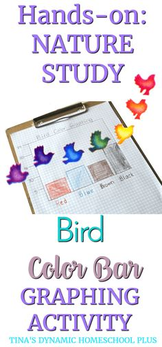 Hands-On Nature Study:Bird Color Bar Graphing Activity. We've been learning so much about types of birds, what they eat, how they migrate. Graphing Activities, Hands On Activities, Science Activities, Science Ideas, Family Activities, Project Based Learning, Fun Learning, Homeschooling Resources, Homeschool Coop