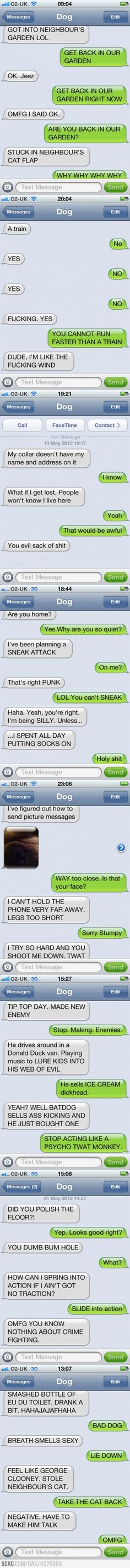Texts from the dog!