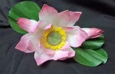 Wired Sugar Flower Lotus