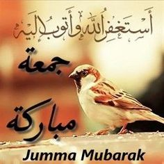 Jumma Mubarak - Friday is important day in Islamic religion and special orders the Allah,Get information about Jumma Mubarak 2019 the importance of Jummah Images Jumma Mubarak, Jumma Mubarak Quotes, Juma Mubarak Images, Jumma Mubarik, Wallpaper For Facebook, Blessed Friday, Islamic Dua, Islamic Quotes, Good Morning Good Night