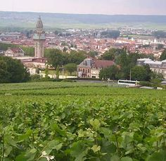 Epernay, France - Home of Moet & Chandon...when I was there, Dom Perignon was $12 a bottle...those were the days!