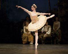 English National Ballet Swan Lake - Learn to dance at BalletForAdults.com!
