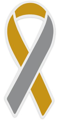 Gold and Silver Awareness Ribbon: All hearing and ear disorders.