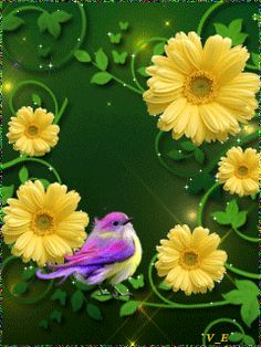 Check the way to make a special photo charms, and add it into your Pandora bracelets. Beautiful Butterflies, Beautiful Birds, Beautiful Flowers, Beautiful Gif, Animation, Glitter Graphics, All Birds, Blue Roses, I Wallpaper