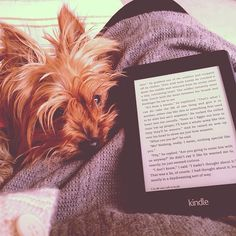 Best Kindle, Research Assistant, Book Categories, Lectures, Any Book, Bookstagram, Ebooks, Author, Reading