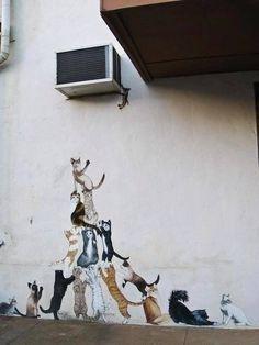 Street Art - Cats